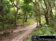 200807斎場御嶽〜道JPG.jpg