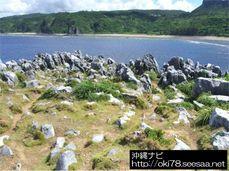 200807辺戸岬〜石灰岩.jpg