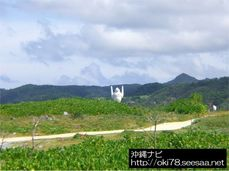 200807辺戸岬�C.jpg