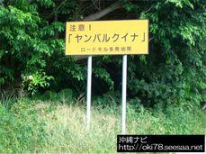 200807辺戸岬周辺道路にある看板.jpg